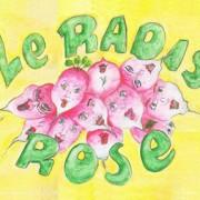 radis_roses_actu_site