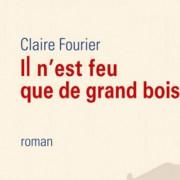 il_nest_feu_que_de_grand_bois_actu-site