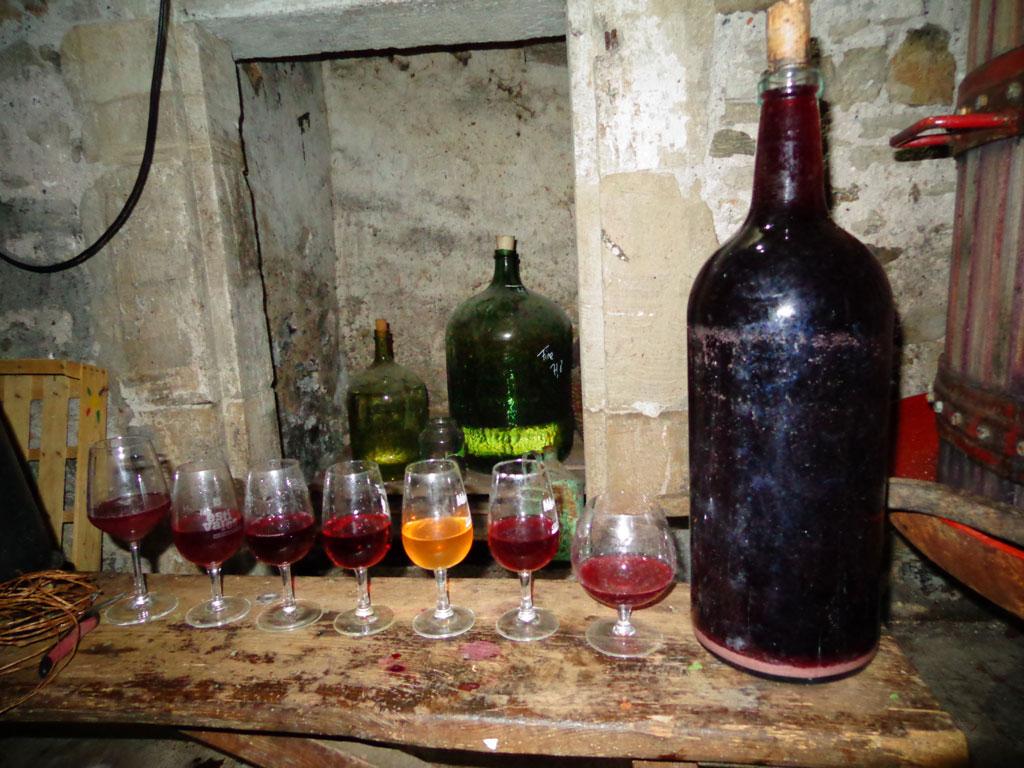 degustaiton_vins